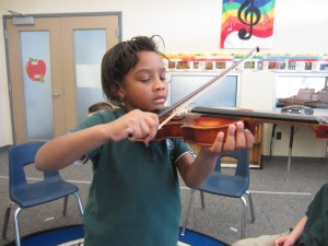 L. Zebras Violin