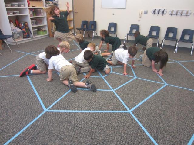 Turtles Spider Web